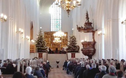 Lydanlæg i Odense Domkirke fra NorthStar