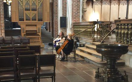 Roskilde Domkirker lydanlæg udvides med basløsning fra NorthStar